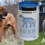 CAMZODAL - medicament pentru caini